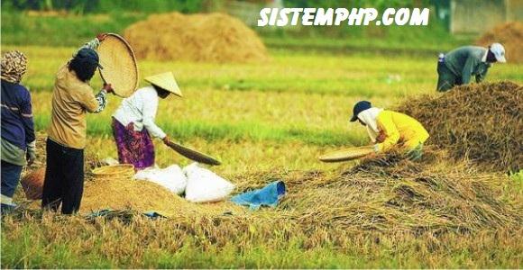Sistem informasi geografis bidang pertanian