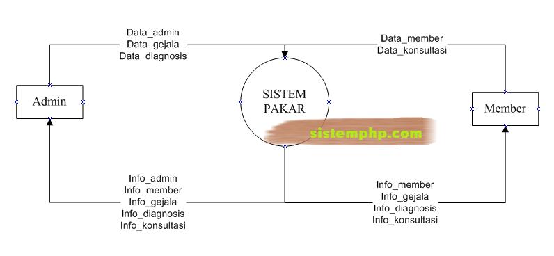 DFD Sistem Pakar Berbasis Web